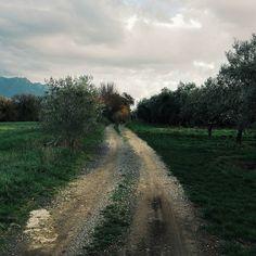La natura offre spettacoli gratuiti. Buonanotte.  Edit with @vscoG3  #italia #nature #campania #salerno #concorsoshooting #landascape #sky #igers_salerno #igers #igerscampania #igersitalia #igersitalia #followme #seguitemi #sud #verso_sud #paesaggisalernitani #vsco #vscocam  #vscoitaly #vscogood #amazing #awesome #beautiful #bestoftheday #photoofday
