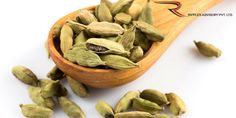Ripples Commodity Blog: Cardamom Futures Trade Up On Surge In Demand