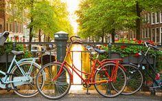 Amsterdam es una ciudad que puedes visitar en pocos días, te damos los consejos para que no te pierdas ningún rincón y a bajo coste.  #Amsterdam #bajo #coste #precio #ciudad #viaje