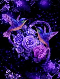 Fish, Pets, Wallpaper, Flowers, Hummingbird, Animals, Animales, Animaux, Pisces