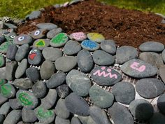 Mini stone growing spot for herbs. Got some leftover stones from...