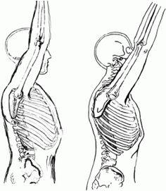 Assessment: Shoulder mechanics