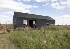 Stealth Barn | Termite Head