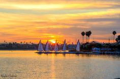 Where is the Best Place to Go Sailing in San Diego? - Penny Realty Blog