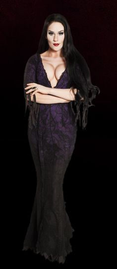 Morticia Adams Family Costume, Family Costumes, Family Set, Musicals, Broadway, Stage, Halloween, Makeup, Hair
