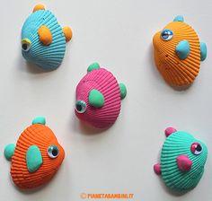 Pesci Conchiglie Colorate
