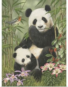 William Vanderdasson Premium Thick-Wrap Canvas Wall Art Print entitled Panda Paradise, None Panda Painting, Painting Prints, Paintings, Animals And Pets, Baby Animals, Cute Animals, Niedlicher Panda, Panda Wallpapers, Boy Tattoos