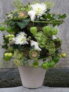 Grijs, groen en wit uit eigen tuin - Groei & Bloei. Met werkbeschrijving!