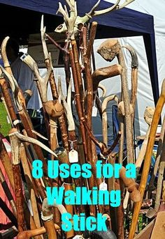 8 Uses for a Walking sticks.  My meds keep me off balance frequently.  I've considered using a cane when needed, but a walking stick would be great.