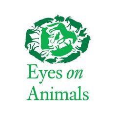 Animals are Not Freight | Day of Action on Live Animal Transport | 29 August
