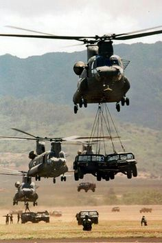 Heavy lifting.......Army strong...Air Assault!