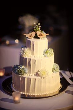 wooden birds adorn a simple tiered cake -- great for the rustic wedding theme