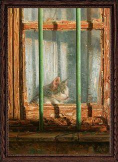 ❤️ =^.^= CÅt§ in The Window ❤️ - Capel Antonio - Spain