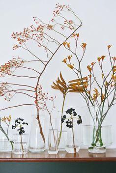 Tijdens mijn bezoekjes aan het tuincentrum ontdek ik voortdurend mooie nieuwe dingen die ik maar met moeite kan laten liggen. Dit keer werd ik erg geïnspireerd door de mooie herfst takken die bij de bloemen afdeling werden gepresenteerd. Vormen en kleuren die helemaal bij dit seizoen passen waardoor je bijna zin zou krijgen in de donkere dagen.