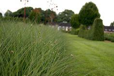 Schön kombiniert! Gartenpraktikum Tag 6, 02.07.2016 Die Achse ist eines der Hauptelemente im Sussex Prärie Garten. Räumlich wird sie durch eine Hainbuchenhecke begrenzt. Mittig befindet sich eine l…