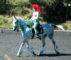 homemade horse costumes   that s pretty creative what a saintly horse most horses