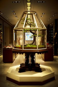 Maison Hermès Window Display by flower artist, Makoto AZUMA, Japan. Could be into this idea for the home.