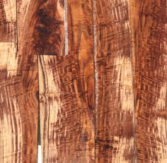 23 Best Cool Woods Images Wood Sample Wood Types Of Wood