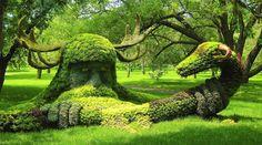 Montreal botanical garden, Canada