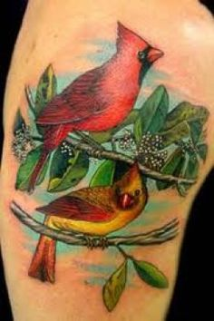 Cardinal Tattoos And Designs-Cardinal Tattoo Ideas And Meanings
