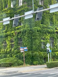Summer Vine, Wind Turbine, Vines, Green, House, Home, Arbors, Homes, Grape Vines