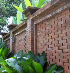 tropical bali architecture - brick wall
