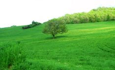 Marche, Italy - Countryside by Gianni Del Bufalo CC BY-NC-SA IMG_4541-50_stitch