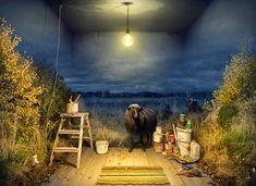Foto surrealista, imagenes de fantasia con retoque digital- Surreal photo, images of fantasy with digital retouching