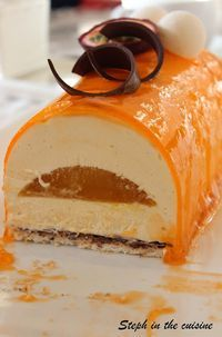 Steph in the cuisine: Bûche de Noël Vanille/Fruit de la Passion/Dacquoise Coco Easy Cheesecake Recipes, Dessert Recipes, Dacquoise Coco, Fruit Cake Design, Chocolate Fruit Cake, Fresh Fruit Cake, Elegant Desserts, Sweets Cake, French Pastries