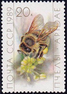 1988 Russian Stamp, Scott No 5733, Worker collecting pollen.