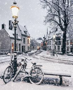 ✨Winter Magic ✨ Okay here is one more🙈❄️ The snowstorm was too good s. ✨Winter Magic ✨ Okay here is one more🙈❄️ The snowstorm was too good so I have Winter Szenen, Winter Love, Winter Magic, Winter Travel, Winter Season, Winter Europe, Winter Is Coming, Snowy Day, Snow Scenes