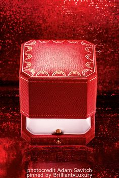 Brilliant Luxury♦CARTIER red jewelry box (photocredit by Adam Savitch) Cartier Jewelry, Red Jewelry, Jewelry Box, Jewelery, Van Cleef Arpels, Marie Claire, Creative Business, Luxury Branding, Fashion Photography