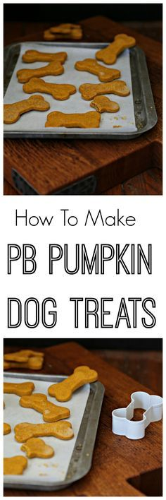 All natural and made with just 4 simple ingredients. Peanut Butter Pumpkin Dog Treats are treats your pups will love.
