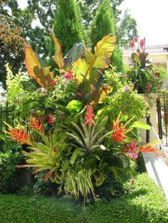 beautiful tropical front yard landscape ideas for your home 1