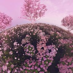 . . . #cgi#3D#illustration#motiondesign#abstract#sculpture#surreal#postvision#render#inspiration#octane#otoy#cinema4d#octanerender#c4d#digitalart#contemporary#soft#visuals#designer#phygital#minimalist#digital #material #dazed #animation #graphicdesign #3ddesign #vr #virtualreality #virtualworld #worldbuilding #tinyplanet