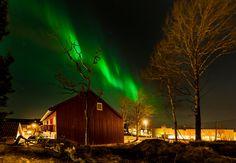 Fotografía Aurora in Trondheim, Norway por Aziz Nasuti en Trondheim Norway, Aurora, Northern Lights, Nature, Photography, Travel, Painting, Paisajes, Fotografie