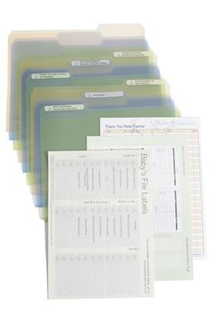 BabyBriefcase® Document Organizer | Nordstrom    I could put this together myself- great idea to have everything together!