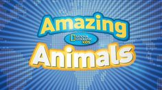 Amazing Animals - Short videos on various animals, including those who live in water.