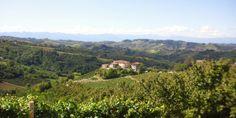 Piemonte hills ............................ Holiday apartments with jacuzzi in the garden - on the border Piemonte / Liguria (Italy) - www.verdita.com