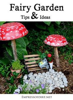 Fairy Garden Tips Ideas