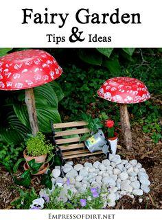 Fairy Garden Tips Ideas
