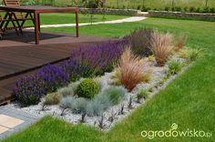 Symetryczno-liryczny z widokiem na Ślężę - strona 18 - Forum ogrodnicze - Ogrodowisko