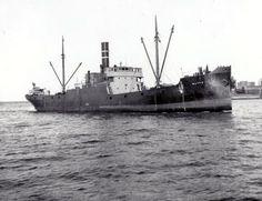 WAPPU Sailing Ships, Maine, Boat, Boats