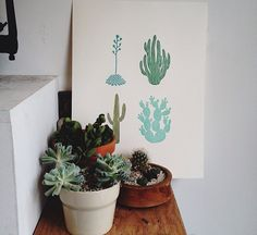 candystorecollective.com >> plant home decor