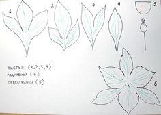 """Выкройка, шаблон  для цветка из фоамирана """"Пион"""