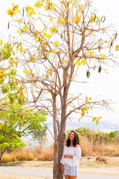 Ficha técnica | Looks: annacor, por Sara Baia Fotografia: We | Fotografia e Publicidade, por Thalita Neves e Leonardo Vidal Quem é ela: Anna Flor