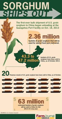 Trade allows the hard work of U.S. farmers reach the shores of China -- and beyond. /Nate