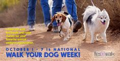 It's National Walk Your Dog Week and we know the perfect way to celebrate - with a ResQwalk, of course! Enjoy walking your dog this week and turn on your ResQwalk app to raise money for homeless animals! Download here: http://www.resqwalk.com #nationalwalkyourdogweek #walkyourdogweek #walk4animals
