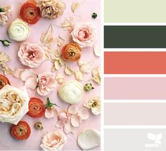 Explore Design Seeds color palettes by collection. Colour Pallete, Colour Schemes, Color Combos, Color Palettes, Color Trends, Design Seeds, Spring Design, Color Swatches, Color Stories