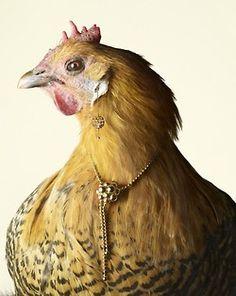 (via Luxury Chicks by Peter Lippmann for Marie Claire 2   Trendland: Fashion Blog & Trend Magazine)